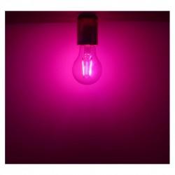 Ampoule LED E27 Filament 2W Rose